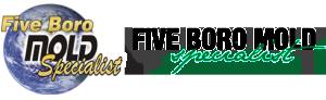five-boro-mold-specialist-300x92
