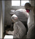 NYC mold inspection contractors