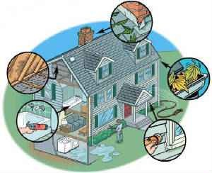 Common places mold growsin a home