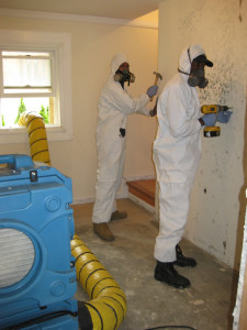 NYC-mold-inspection-and-mold-removal-service