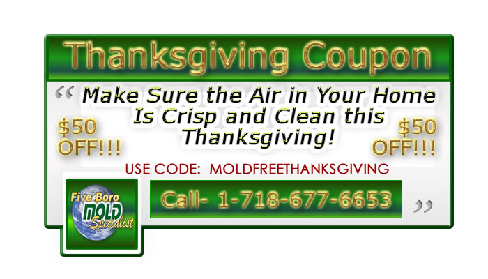 thanksgiving coupon for mold inspection