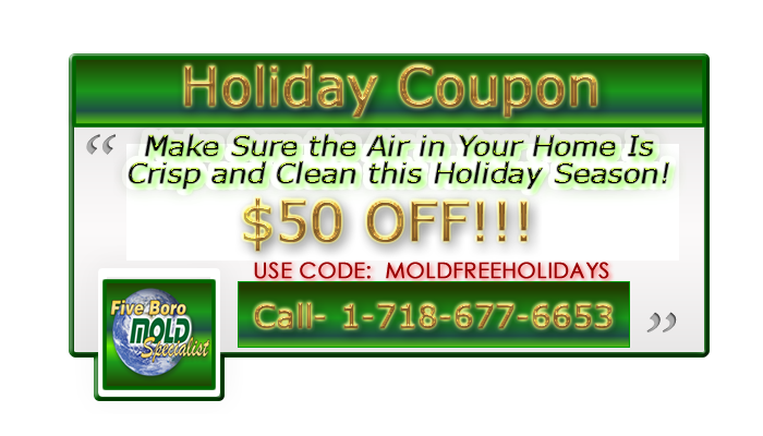five boro mold specialist xmas coupon code