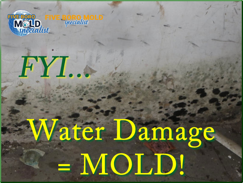 water damage services NYC