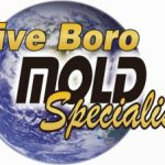 five-boro-mold-specialist-300x226