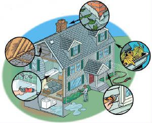 mold-inspection-remediation-services-new-york