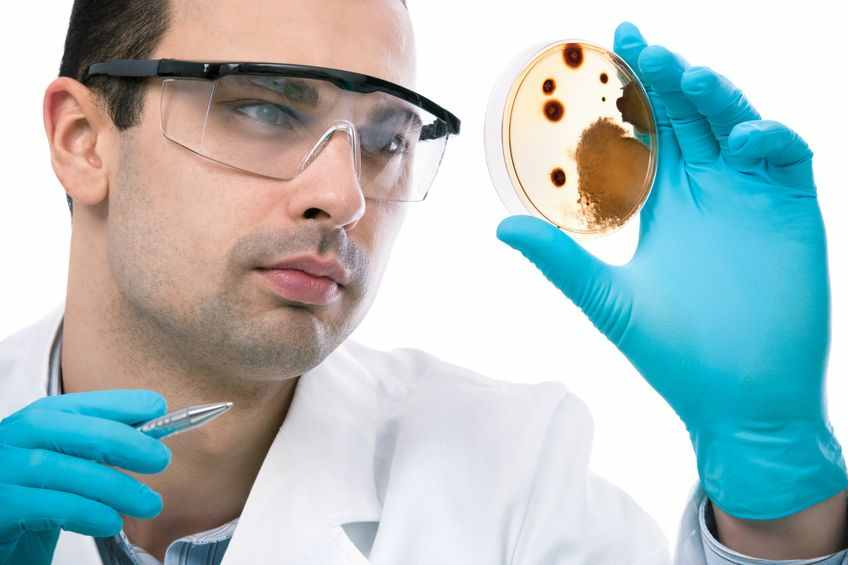 NYC mold testing services