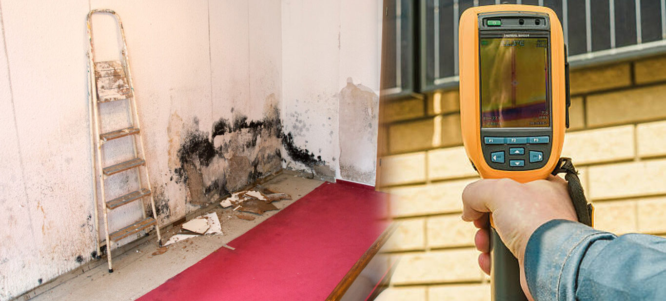 Mold Inspection NYC, quality mold testing queens ny, Mold Testing NYC, Black mold testing Queens, Queens Black mold testing, mold removal companies brooklyn ny, Quality Mold Removal Manhattan, Mold Remediation Manhattan